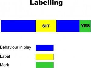 Behaviour-Labelling-300x224