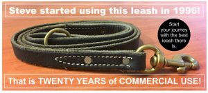 Leather Leash K9pro